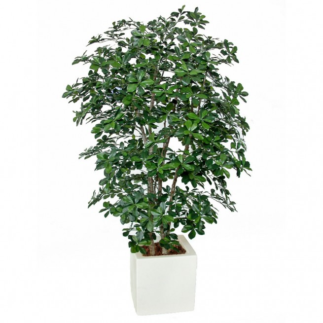 Planta semi-artificiala Ila, Buxifolia Boschetto Green - 180 cm
