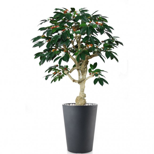 Planta semi-artificiala Ila, Coffee Crown Green - 180 cm