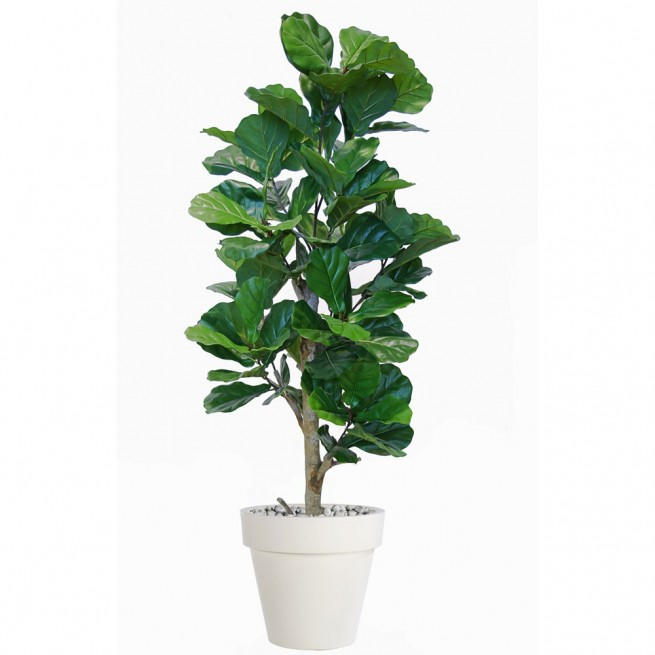 Planta semi-artificiala Ila, Ficus Lyrata Step Tree Green - 160 cm