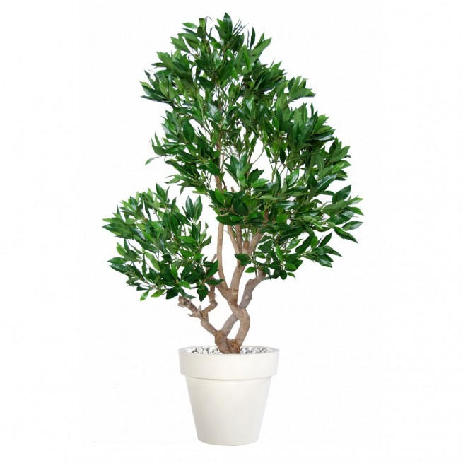 Planta semi-artificiala Ila, Laurel Stylish Green - 150 cm