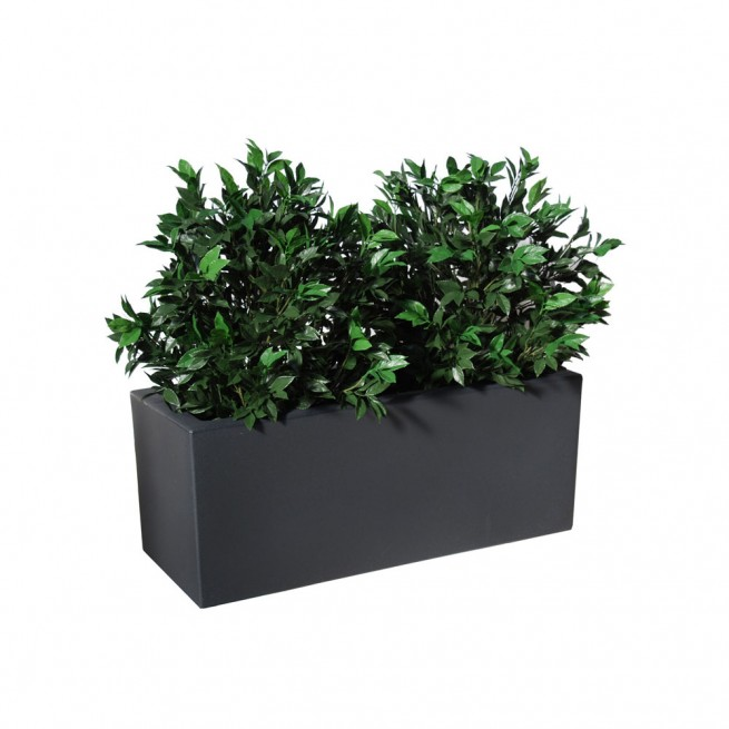 Planta semi-artificiala Ila, Laurel UVR Fence Green - 110 cm