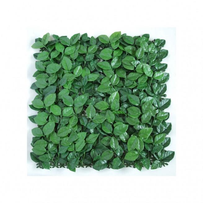 Planta semi-artificiala Ila, Mat Ficus Ginseng UVR Green - 50 x 50 cm