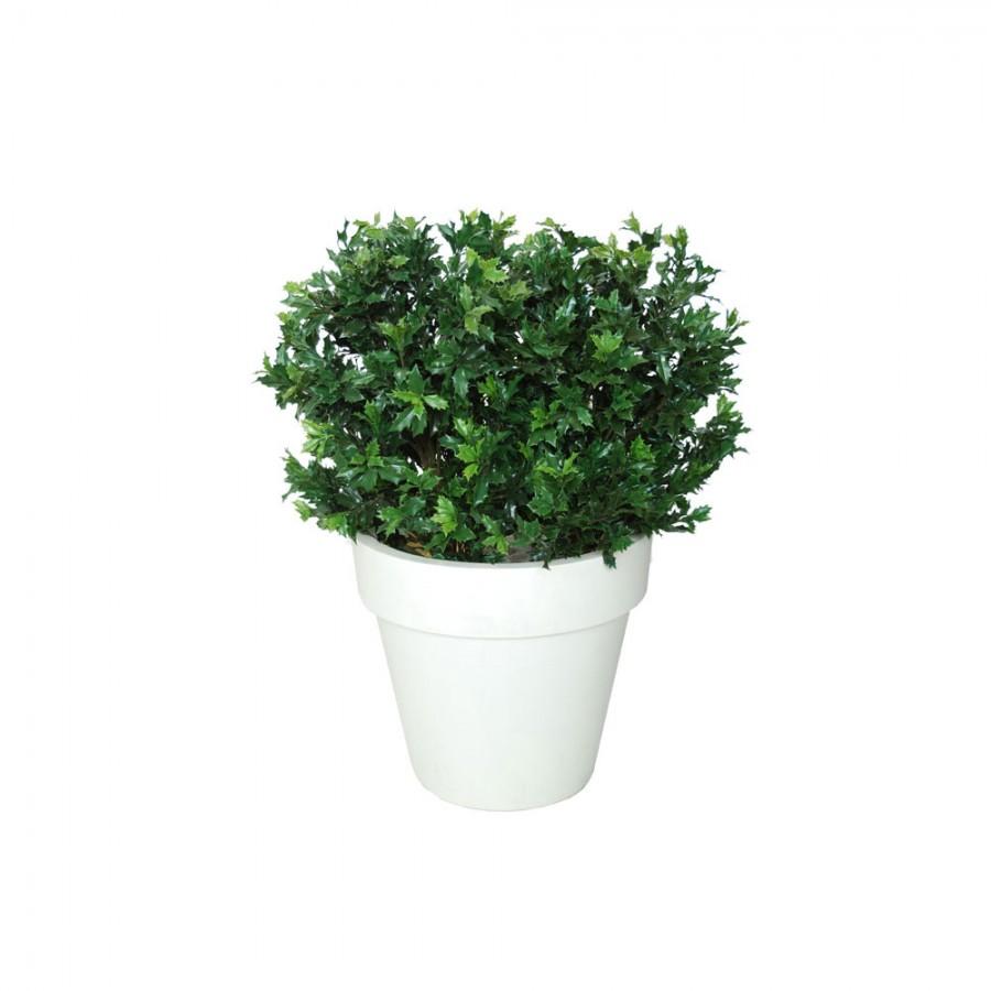 Planta semi-artificiala Ila, Osmanthus UVR Bush Lux Green - 130 cm