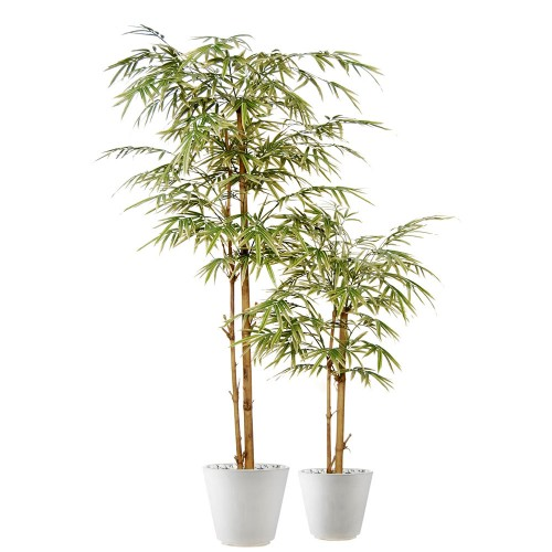 Planta semi-artificiala Ila, Bamboo Japanese Tree Variegated - 180 cm