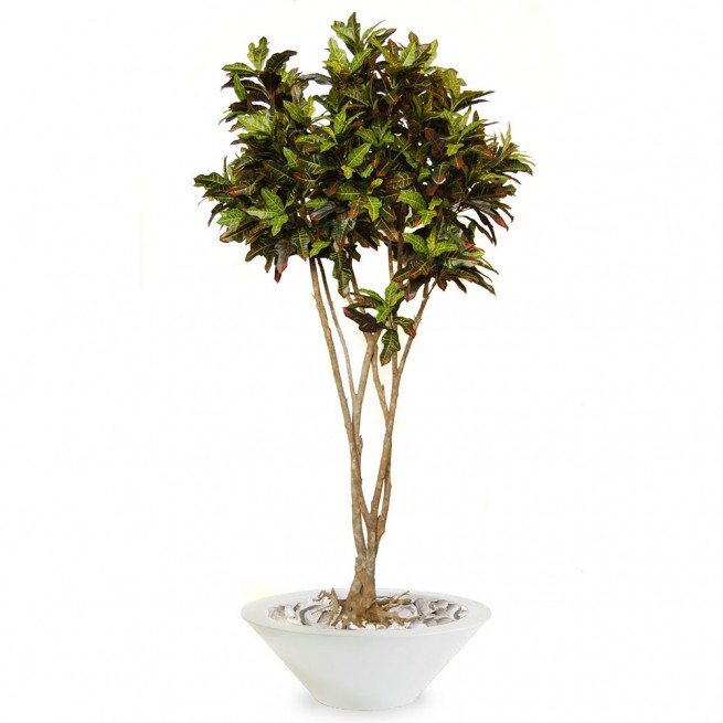 Planta semi-artificiala Ila, Croton Mash Root Multicolor - 250 cm