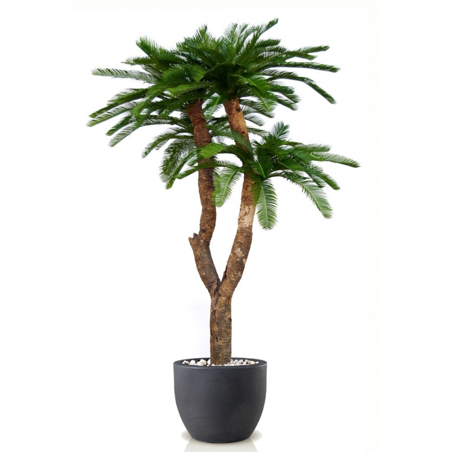 Planta semi-artificiala Ila, Cycas Baby Drago Green - 250 cm