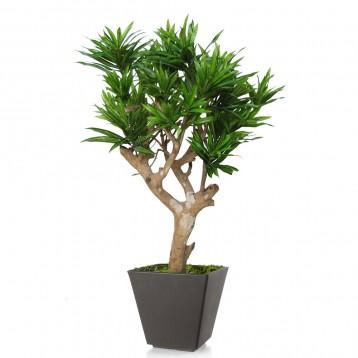 Planta semi-artificiala Ila, Dracaena Reflexa Robustina Green - 100 cm