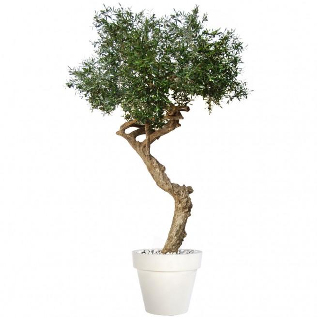 Planta semi-artificiala Ila, Olive Nidra Green - 260 cm